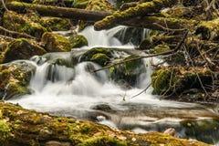 河水向青苔瀑布扔石头 免版税图库摄影