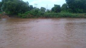 河水自然风景 库存照片
