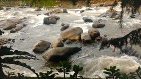 河沿场面 库存图片