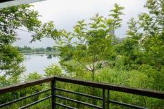 河沿平台生锈的扶手栏杆观光者的树的  免版税库存照片
