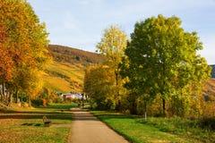 河沿步行在Merl,莱茵河流域巴列丁奈特,德国 免版税库存照片