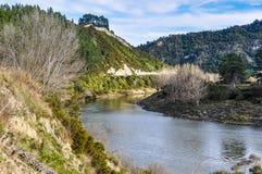 河沿视图在旺格努伊国家公园,新西兰 库存照片