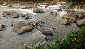 河沿视图 免版税库存图片