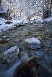 河流冬天 库存照片