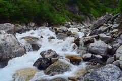 河流动与艰苦跋涉一起的Pushpavati到花谷, Uttarakhand,印度 免版税图库摄影