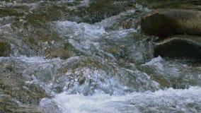 河流程水表面慢镜头 股票录像