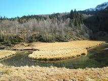 河流程 库存图片