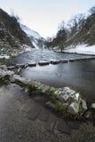 河流经的积雪的冬天风景在森林VA里 免版税库存图片