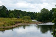 河渔 库存照片