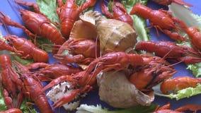 河煮沸的小龙虾 影视素材