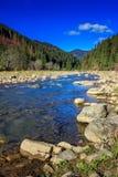 河由岩石岸流动在秋天山森林附近 免版税图库摄影
