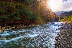河由岩石岸流动在秋天山森林附近 库存图片