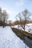 河的全景和树在冬天城市停放 莫斯科 俄国 库存照片