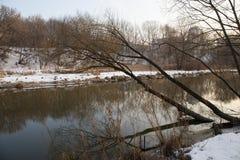 河的全景和树在冬天城市停放 莫斯科 俄国 免版税图库摄影