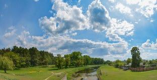 河的全景照片在森林附近的在蓝色多云天空下 免版税库存照片