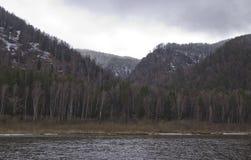 河的多小山海岸雾的 库存照片
