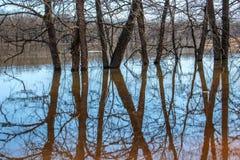 河的大溢出,水离开银行并且填装了一个巨大的区域, var 2 免版税库存照片