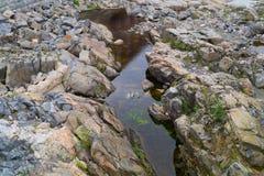 河的干河道用岩石和水 库存图片