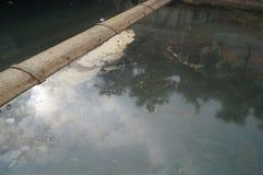 河的污染 免版税库存照片