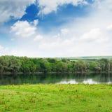 河的河岸的草甸 库存图片