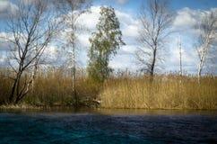 河的河岸 免版税库存照片