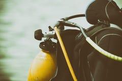 河的潜水者 库存照片