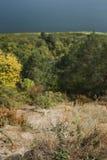 河的看法通过秋天森林 免版税库存照片