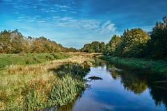河的草甸在autum期间 免版税库存图片