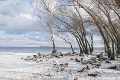 河的视图在一个冷晴天的 免版税库存图片