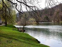 河的视图 免版税库存图片