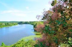 河的风景从小山的 免版税库存图片