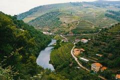 河看法和葡萄园是在小山,杜罗河谷 图库摄影