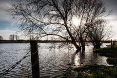 河看的地方化的洪水破裂它的银行在涨潮以后 库存图片