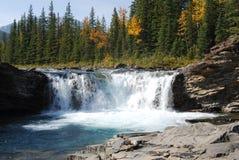 河绵羊瀑布 库存图片