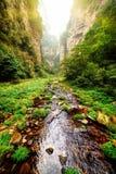 河美丽的景色用在底层水晶水深唛哥 库存照片