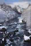 河苏格兰人冬天 库存图片