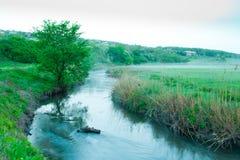 河薄雾 图库摄影