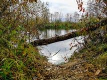 河西摩拉瓦河在秋天 库存图片