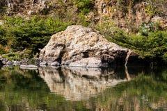 河视图 库存图片