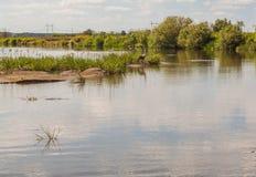 河谷Teterev嵌套和休息处前面离去 免版税库存图片
