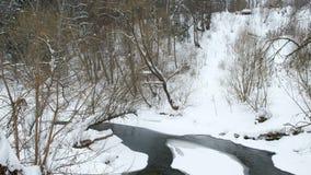 河赛跑通过冬天森林,美好的冬天风景 影视素材