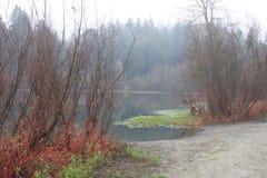 河边区地方公园-是分钟在温莎西部和围拢由经典酒乡风景 冬天 免版税库存照片