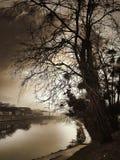 河边界 免版税库存照片