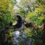 河边视域 库存图片