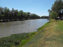 河边 免版税库存图片
