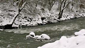 河通过冬天森林 股票视频