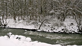 河通过冬天森林 影视素材