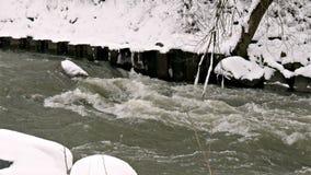 河通过冬天森林 股票录像