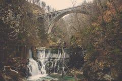 河通过对围拢由峭壁森林的鲜绿色水池的水坝 库存照片