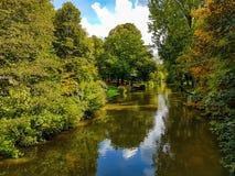 河通过森林的中部 库存照片